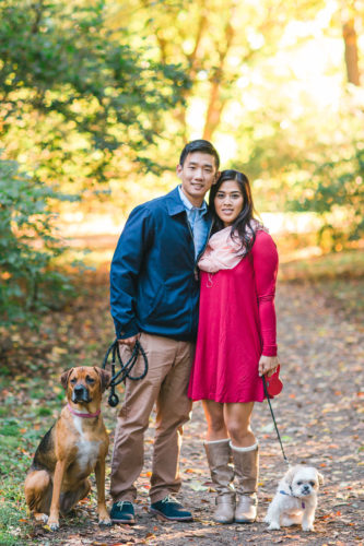 San Francisco Family photographs with dogs