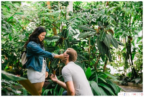 San Francisco Conservatory of Flowers Marriage Proposal