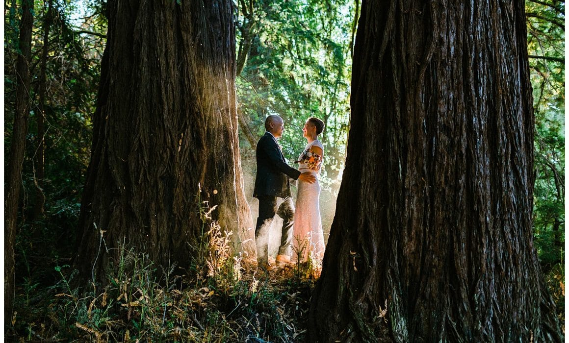 OVY Camp Wedding Photographer San Gregorio